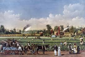 Plantation aux Etats-Unis